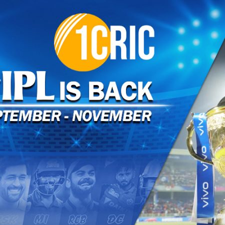IPL PLAYOFF : CSK, DC, RCB qualify for the  playoff